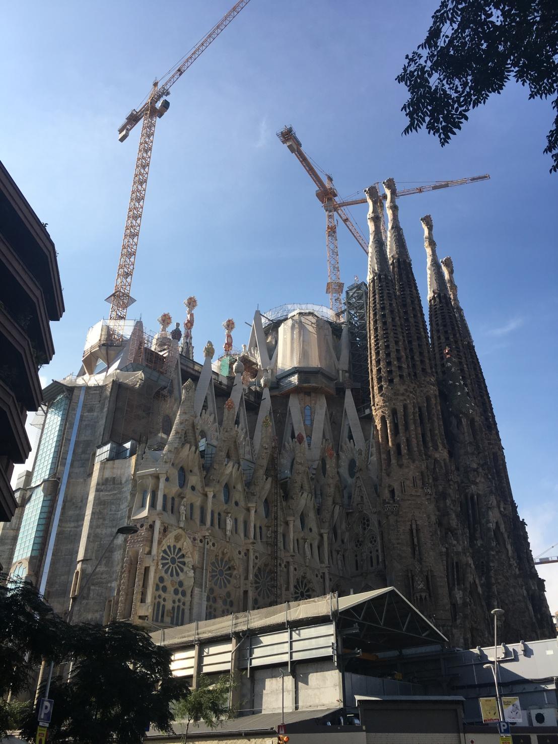 Familia Favourite, Barcelona2016